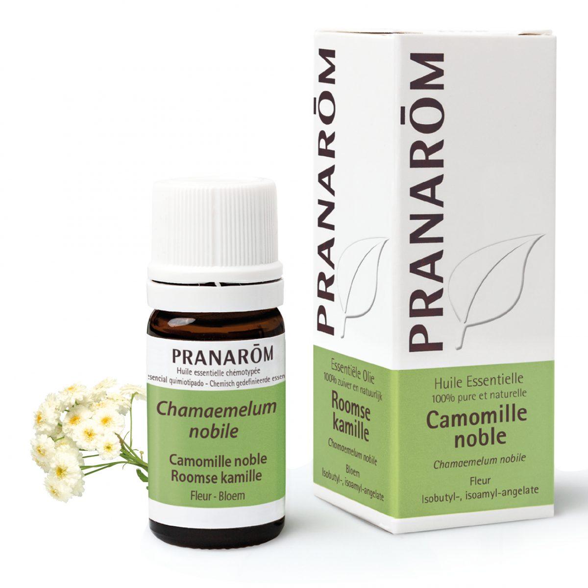 huile essentielle de camomille noble