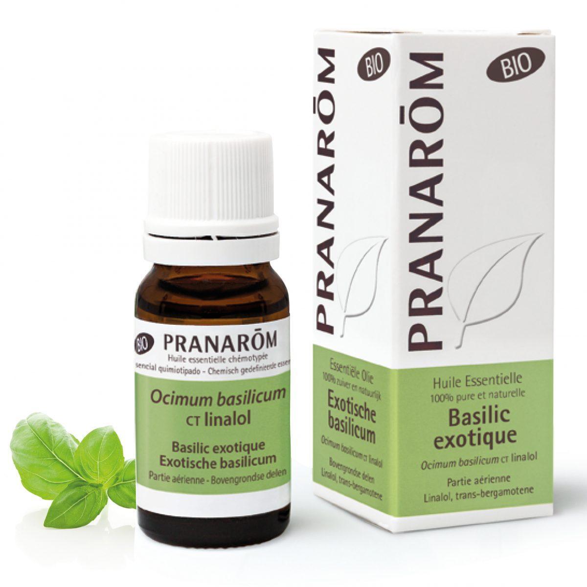 huile essentielle de basilic exotique bio