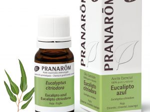 huile essentielle d'eucalyptus citronnée